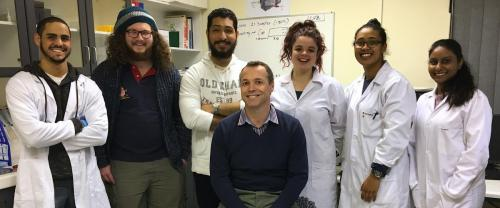 2017 - Honours students and Interns
