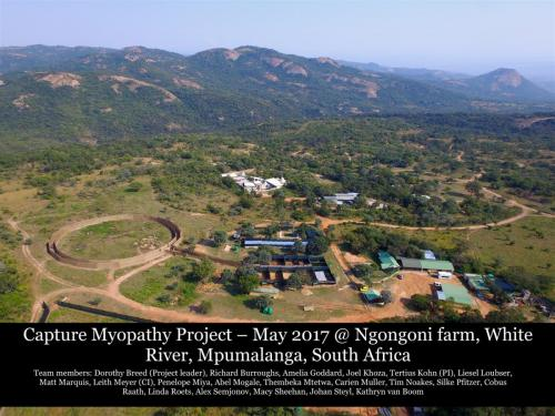 Capture Myopathy 2017