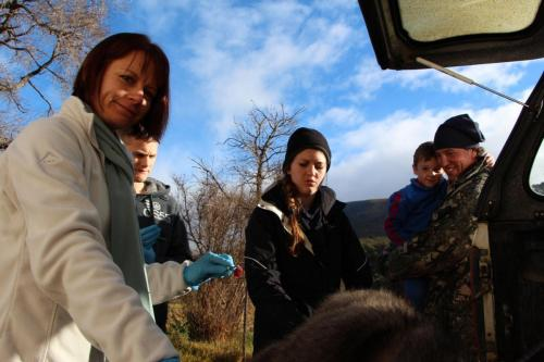 Cecile Reed showing the students how to harvest tissue.