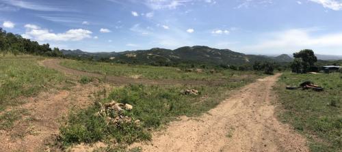 Antelope training track, Nelspruit